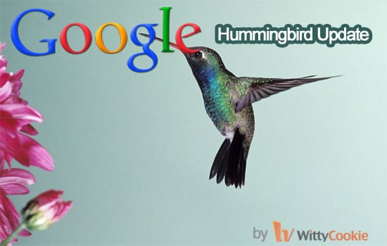 Hummingbird Update - Facts about Hummingbird Update